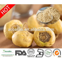 Chinese Herbal Medicine Powder Peruvian Maca Extract